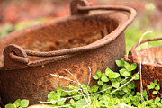 Carolyn Pettijohn - Rusted kettle