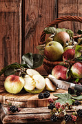 Black Berries Posters - Rustic Apples Poster by Christopher and Amanda Elwell