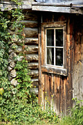 Cabin Window Posters - Rustic Cabin Window Poster by Athena Mckinzie