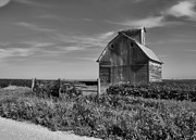 Illinois Barns Photo Prints - Rustic Charm 3 Print by Tom Druin