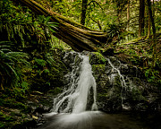 Puget Sound Photos - Rustic Falls - Orcas Island by Puget  Exposure