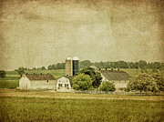 Amish Farmer Photos - Rustic Farm - Barn by Kim Hojnacki