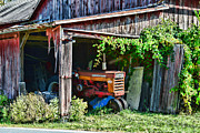 Shed Photo Framed Prints - Rustic Farmall Tractor Framed Print by Paul Ward