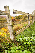Autumn Landscape Digital Art Prints - Rustic Landscapes - Broken fence Print by Gary Heller