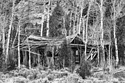 White House Prints Posters - Rustic Rundown Rocky Mountain Cabin BW Poster by James Bo Insogna