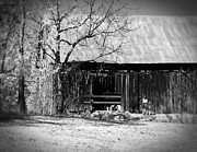 Tennessee Farm Digital Art Prints - Rustic Tennessee Barn Print by Phil Perkins