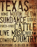 Live Music Mixed Media Posters - Rustic Texas Art Poster by Chastity Hoff