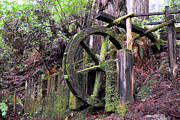 Old Fence Posts Prints - Rustic Water Wheel Print by Jason Waugh
