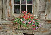 Old Barn Paintings - Rustic Window by Sherri Crabtree