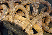 Acapulco Prints - Rusty Antique Ship Chain Print by Linda Phelps