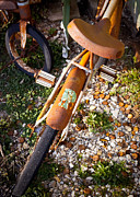 Country Town Posters - Rusty Bike Bumper Poster by Sonja Quintero
