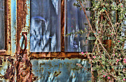 Window And Doors Framed Prints - Rusty Charm Framed Print by Diana Sainz