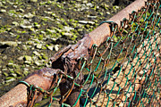 Boston Ma Digital Art Posters - Rusty Fence Poster by John Hoey