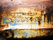 Old Ford Prints - Rusty Old Ford Closeup Print by Edward Fielding