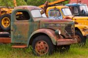 Photograph Posters - Rusty Old Trucks Poster by Louise Heusinkveld