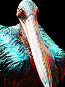 California Mixed Media Posters - Rusty - Pelican Art Painting Poster by Sharon Cummings