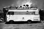 Trailer Park Posters - RV Trailer Park 5D22705 Black and White v2 Poster by Wingsdomain Art and Photography