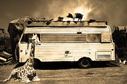 Red Pig Posters - RV Trailer Park 5D22705 Sepia Poster by Wingsdomain Art and Photography