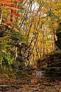 Sandstone Bluffs Framed Prints - S09239 Autumn at Pewitts Nest Framed Print by Theo OConnor