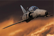 Cheetah Digital Art - SAAF Cheetah Sunset by Anton Nel