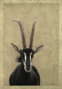 Antelope Posters - Sable Poster by James W Johnson