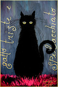 Donatella Muggianu Prints - Sad and ruffled cat Print by Donatella Muggianu