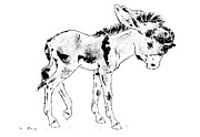 Donkey Drawings Prints - Sad Donkey Print by Kurt Tessmann