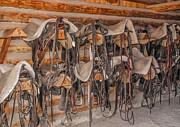 Sue Smith - Saddles and Bridles