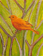 Fauna Glass Art Metal Prints - Saffron Finch Metal Print by Anna Skaradzinska