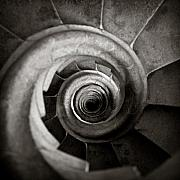 Monochrome Photos - Sagrada Familia Steps by David Bowman