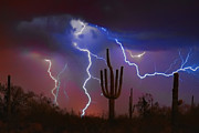Desert Photo Framed Prints - Saguaro Lightning Nature Fine Art Photograph Framed Print by James Bo Insogna