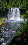 Green Forest Photos - Sahalie Falls by Cat Connor