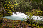 Water Flowing Framed Prints - Sahalie Oasis Framed Print by John Daly