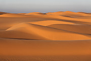 Sahara Framed Prints - Sahara Desert Dunes Framed Print by Robert Preston
