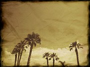 Old Tress Prints - Sahara Palms Print by Amyn Nasser