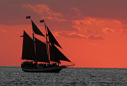 Sail Greeting Cards Prints - Sail 5 Print by Bob Slitzan