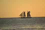 Key West Pyrography - Sail Away by Vickie Hixson
