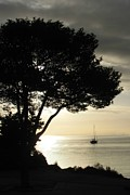 Strait Of Juan De Fuca Posters - Sailboat At Dawn Poster by Barbara Henry