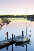 Docked Sailboat Prints - Sailboat at sunrise Print by Elena Elisseeva
