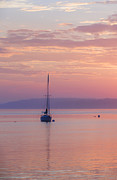 Sailboat At Sunrise In Casco Bay Maine Print by Diane Diederich