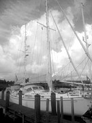 Local Restaurants Posters - Sailboat bw Poster by Marla Hoover