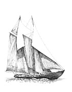 Tall Ship Drawings Prints - Sailboat Print by Carl Genovese