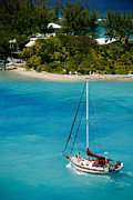 Sailboat Posters - Sailboat on Azure Waters Nassau Bahamas Poster by Amy Cicconi