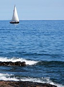 Bridget Johnson Metal Prints - Sailboat on Superior Metal Print by Bridget Johnson