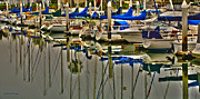 Sailboats Photos - Sailboat Reflections by Cheryl Young