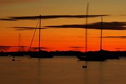 Joshua McDonough - Sailboat Silhouettes in...