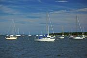 Amazing Jules - Sailboats