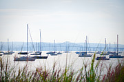 Sailboats At Rest Print by Bill Cannon
