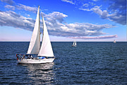 Blue Sailboat Metal Prints - Sailboats at sea Metal Print by Elena Elisseeva