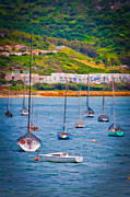 Sailboats At Simons Town Print by Cliff C Morris Jr